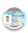 Renew My License or Registration